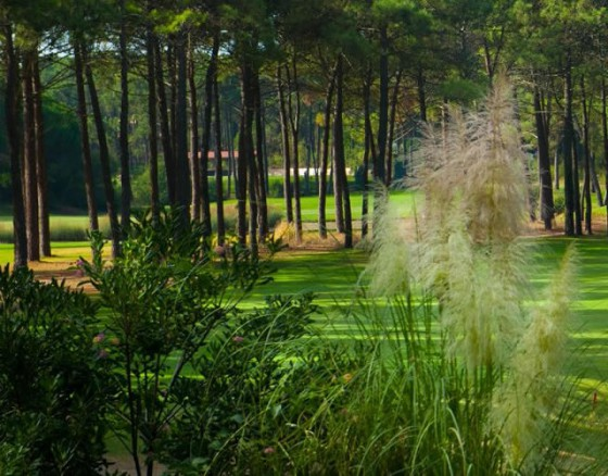 <p>Aroeira II is situated on the Setubal Peninsula 30 minutes from Lisbon. The Golf Course was designed by Donald Steel in 2000, built to European Tour specifications. The holes are long and there are many water hazards too.</p>