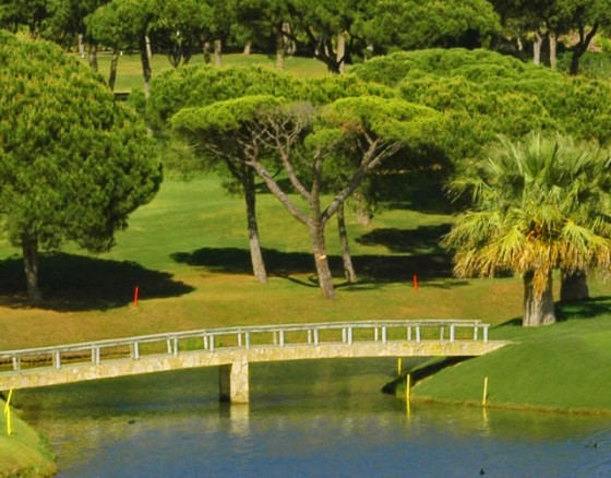 <p>Pinheiros Altos is established as one of the most prestigious and successful premier golf and leisure resorts in Europe, and owns a 27 hole Championship golf course. The original 18 holes were designed by the respected American architect Ronald Fream and the additional 9 holes, created by the highly regarded Portuguese golf architect George Santana da Silva, opened in 2007. The 27 hole Championship Pinheiros Altos Golf is presented in three contrasting nine hole formats. All nine holes have their starting and finishing points in close proximity to the beautiful Pinheiros Altos Clubhouse. Each hole has four starting tees The white and yellow tees represent the championship and medal tees respectively for the men, the red and blue tees for the ladies. Firm, Fast and Testing Greens The firm, fast and testing greens, sown with Pentcross Bent and combined with the Bermuda fairway grass, provide resilient and excellent surfaces on which to play golf and make Pinheiros Altos a must play course when visiting the Algarve.</p>