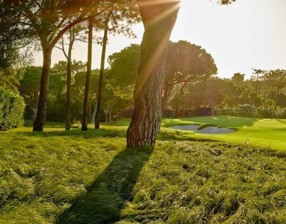 <p>One of the three courses in the heart of Quinta Do Lago, and nestled within the privacy and security of the Ria Formosa nature reserve. The North Course was totally redesigned in 2014, by renowned architect Beau Welling, in conjunction with former European Ryder Cup captain Paul McGinley. The new layout has been built to the highest specifications, with an investment of &euro9million. All the greens, tees, bunkers, irrigation and drainage systems and cart paths have been rebuilt using innovative technology. Four sets of tees have been introduced on each hole to accommodate players of all levels. Golfers are challenged by a combination of undulating greens, wellpositioned bunkers and water hazards. A lowcut Bermuda grass approach has been introduced around greens to create recovery shot options, therefore encouraging all levels of play. Through the introduction of seasonal rough grass and the planting of specimen trees, the aesthetics and environmental impact of the par72 course has significantly improved. The renovation has allowed for water recycling, solar energy while the grassy areas will encourage new ecosystems.</p>