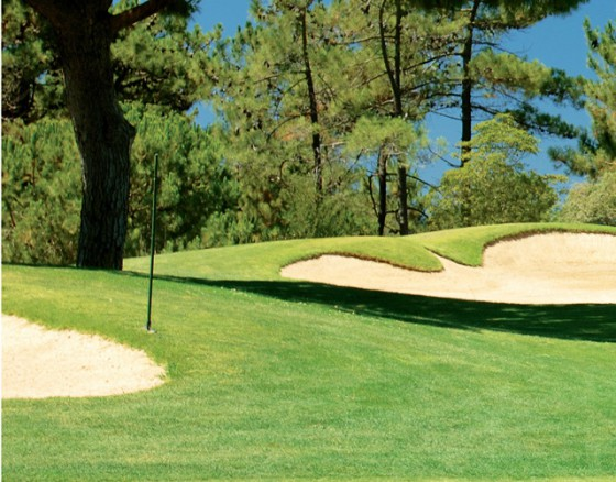 <p>The San Lorenzo Golf Course was opened in 1988 and takes advantage of wonderful topography on the Quinta do Lago estate, winding its way gently over undulating pine woodland. The 18 holes lie in the unspoilt South east corner of Quinta do Lago, bordering the Ria Formosa Estuary and salt water lagoons. The San Lorenzo Golf Course is laid out in a figure of eight and at the heart lies the San Lorenzo club housewith golf pro shop comfortable changing facilities welcoming bar and restaurant. </p>