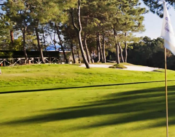 <p>The<strong>Islantilla</strong><strong>Golf</strong><strong>course</strong>has 27 holes surrounded by amazing landscapes of Costa de la Luz, Spain. The<strong>Islantilla</strong><strong>golf</strong><strong>course</strong>offers different levels of difficulty: you can enjoy three different game experiences. The blue<strong>course</strong>is for golfers with low handicaps; the green one perfect for golfers with a medium handicap; and the yellow one was designed for players with a high handicap. This golf course enjoyable round for<em><strong>every level</strong></em>golfer.</p>